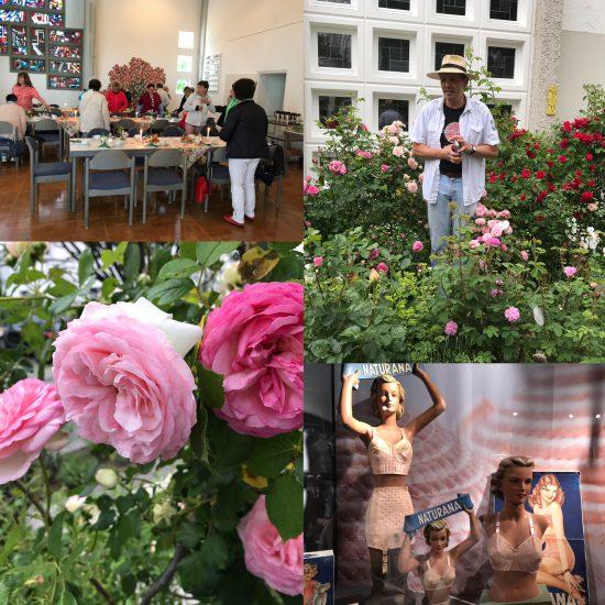 Schöne Rosen – Starke Frauen