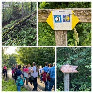 Wanderung Frankenberg – Obermühle